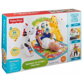MATTEL CCB70 NEWBORN TO TODDLER PLAY GYM