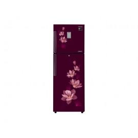Samsung Double Door Refrigerator (RT30M3353R7/IM)-275 L